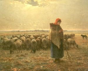 pastores-millet